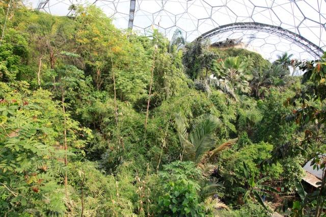 Regnskoven i Eden Project.